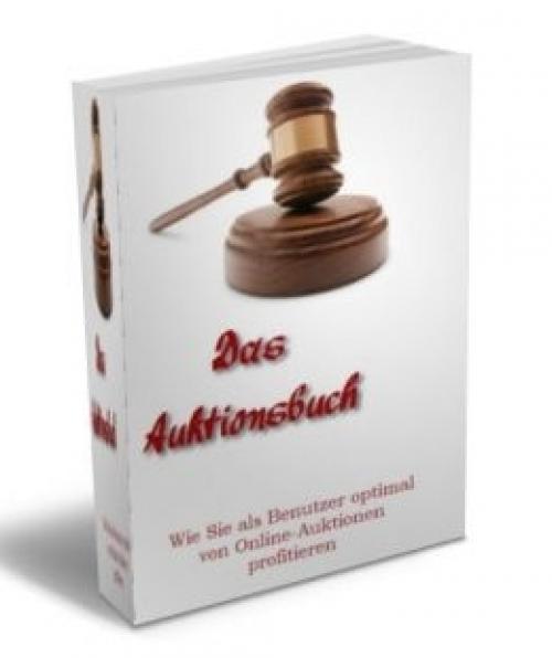 Das Auktionsbuch Online-Auktionen
